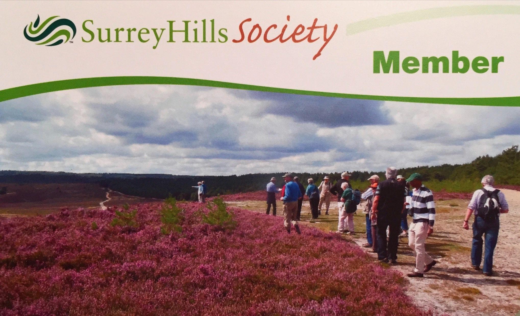 Surrey-Hills.jpg